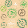 Set of different ECO rubber stamps - Stockvectorbeeld