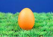 Ostern — Stock Photo