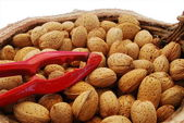 Almonds and nutcracker — Stock Photo