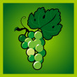 Green grape bunch — Image vectorielle