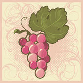Retro-styled grape bunch — Stock Vector