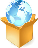 Icon of globe in box — Stock Vector