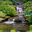 Beautiful waterfall — Stock Photo #2738858