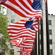 Row of American flags — Stock Photo
