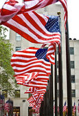 Row of American flags — Stock fotografie