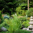 Peaceful Japanese garden — Stock Photo