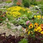 Street garden — Stock Photo #2765160