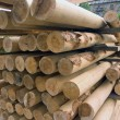 Wood poles. stack - Stock Photo