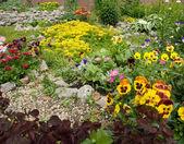 Gatan trädgård — Stockfoto