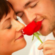 Royalty-Free Stock Photo: Romantic couple enjoying the scent of a rose
