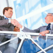 Royalty-Free Stock Photo: Business handshake and trust