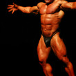Bodybuilders - Stock Photo
