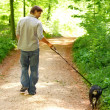 Walking the dog - Stockfoto