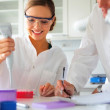 Scientists working - Stock Photo