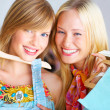 Royalty-Free Stock Photo: Shopping!