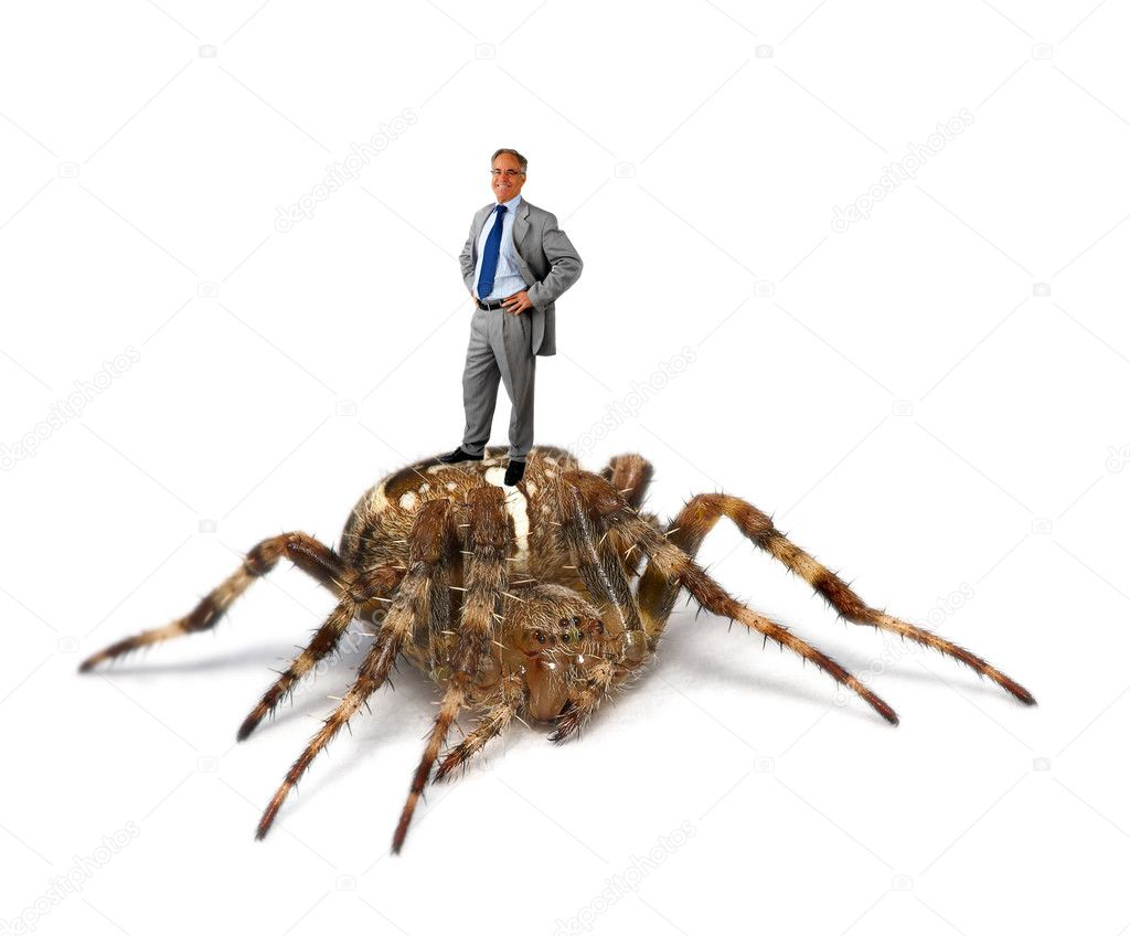 This is a conceptual picture of a business man atop a spider.Are you standing on a gold mine or something else...  Stock Photo #3230057