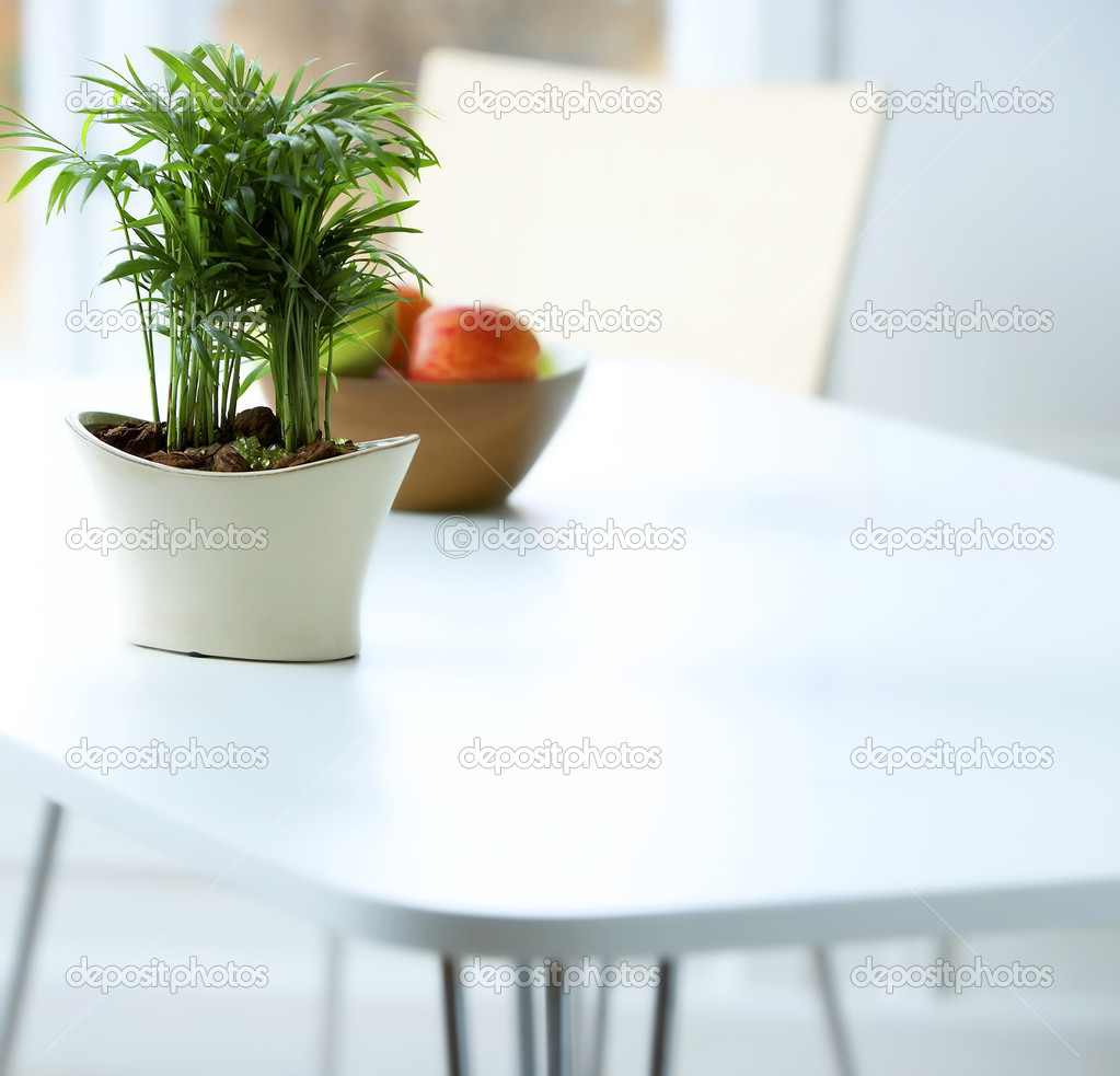 Stylish shot of a classic interior, table, chair and plant. — Stock Photo #3235998