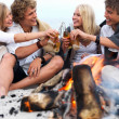 Royalty-Free Stock Photo: Young group of sitting by bonfire at the beach drinking beer