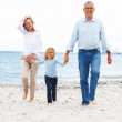 Grandparents at beach with grandchild - Foto Stock