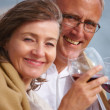Portrait of romantic old couple holding wineglasses - Stock Photo