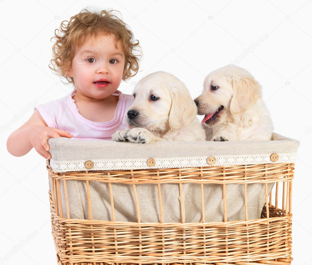 Cute baby girl and two puppies in a basket. Imagine having to keep an eye on 4 puppies and a baby girl, this was a pretty crazy shoot. — Photo #3269280