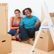 Royalty-Free Stock Photo: Happy couple with boxes in their new house