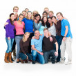 Royalty-Free Stock Photo: Teamwork - group portrait
