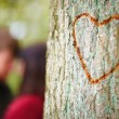 Love - Concept of love carved in tree - copyspace - Stock Photo