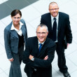 Royalty-Free Stock Photo: Portrait of happy business men and woman standing together