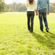 Young couple walking together in a field - Stock Photo