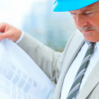 Royalty-Free Stock Photo: Busy mature architect looking at a blueprint