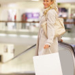 Portrait of a smiling young lady with shopping bag walking down - Stock fotografie