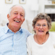 Royalty-Free Stock Photo: Portrait of a smiling senior couple