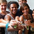 Royalty-Free Stock Photo: Young friends toasting drinks together