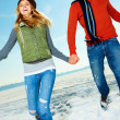 Royalty-Free Stock Photo: Happy young couple enjoying their winter vacation