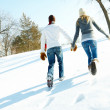 Royalty-Free Stock Photo: Rear view image of a couple walking on snow and