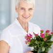 Senior woman holding a potted plant - Stock Photo
