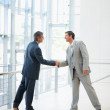 Royalty-Free Stock Photo: Portrait of business colleagues shaking hands