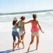 Royalty-Free Stock Photo: Rear view of young girls running on the beach