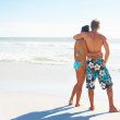 Royalty-Free Stock Photo: Rear view image of a young couple at the beach