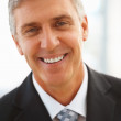 Royalty-Free Stock Photo: Closeup: Portrait of a senior handsome business man
