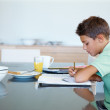 Devoted young boy doing his homework - Stock Photo