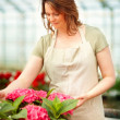 Young female florist at a greenhouse surrounded with flowers - Stock Photo