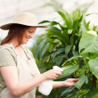 Royalty-Free Stock Photo: Young female wearing a hat watering the plants