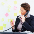 Business woman checking few notes and using the phone - Stock Photo