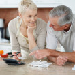 Senior couple calculating bills after shopping - Stock Photo