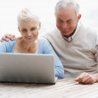 Royalty-Free Stock Photo: Smiling senior man and woman using a laptop