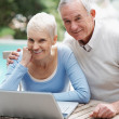 Smiling senior man and woman using a laptop - Stockfoto