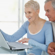 Royalty-Free Stock Photo: Smiling older man and woman using a laptop