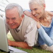 Royalty-Free Stock Photo: Happy senior couple using a laptop on grass